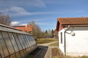 "The ""Jubi"" green house"